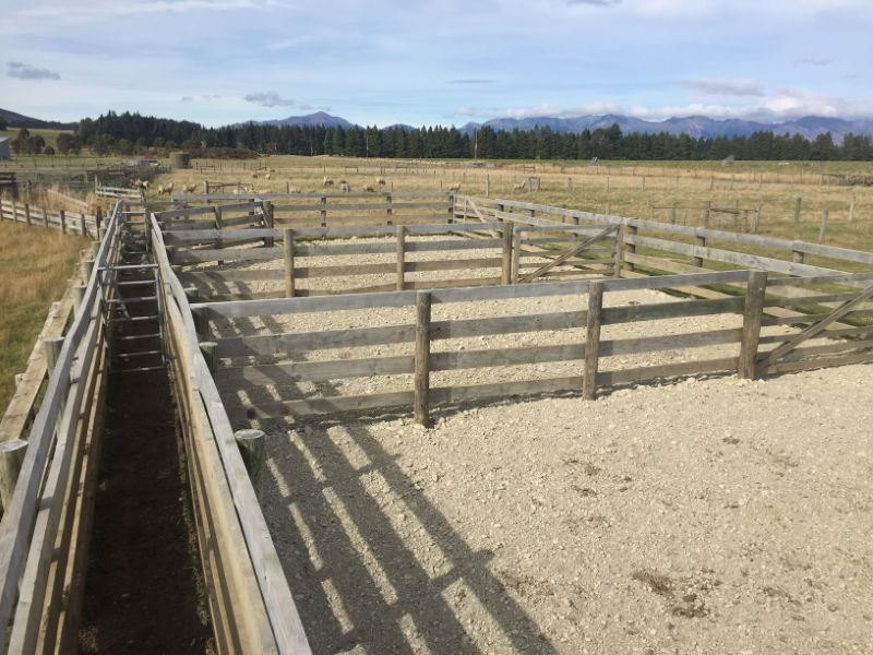 Cattle Yards Great Southern Group