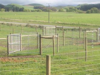 Deer Posts and Strainers